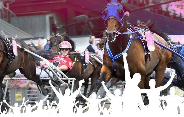 Prispengar Elitloppet 2019
