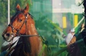 Spela på Elitloppet - få insatsen tillbaka om din häst kommer på andra eller tredje plats!